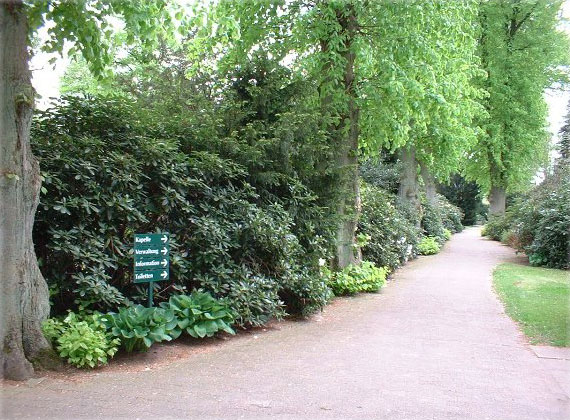 Friedhof Bergstedt